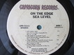 SEA LEVEL (Post-Allman Brothers Band). On The Edge. 1978